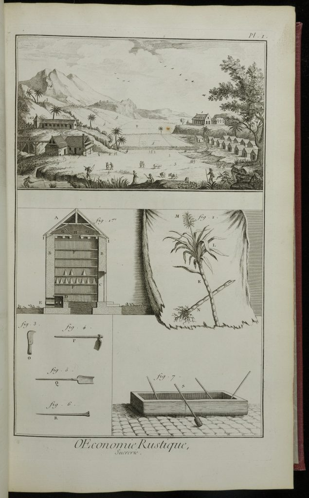 A page of etchings of parts of the process of sugar growth and refinement. Across the top of the page is a view of a sugar plantation, with sugar cane, palm trees, and buildings. Below are four smaller images. Clockwise from upper left: Figure 1: the buidling where sugar loaves are stored. Figure 2: A closeup of an uprooted sugar cane plant. Figure 7: a vat with shovels where sugar cane was refined. Figures 3-6 (togehter in one square) knives and shovles used to cut and refine sugar cane.